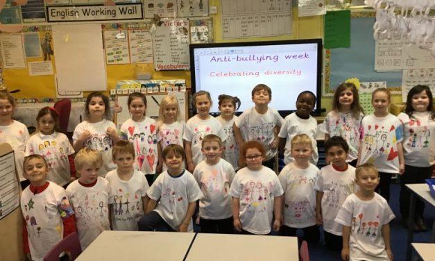 Anti-bullying week – Celebrating diversity